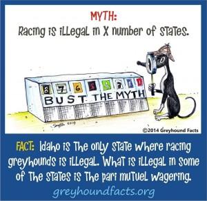 Illegal racing myth