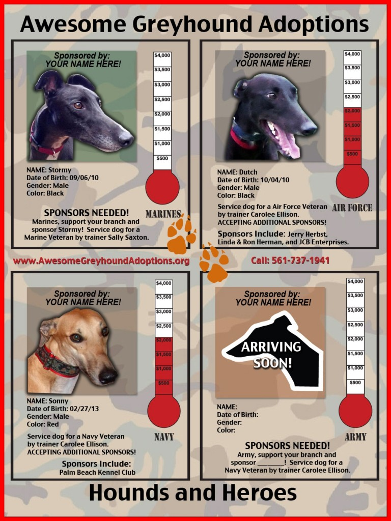 New arrivals for Hounds and Heroes