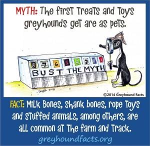 Treats and toys myth
